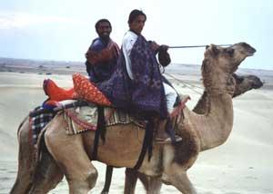 Camel Riders in Thar Desert