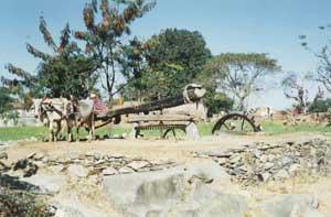 Medieval Irrigation System, Rajasthan