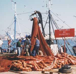 Sardine Fishermen, Portugal