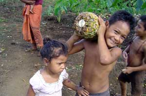 Benjamino with pineapple, Saleimoa