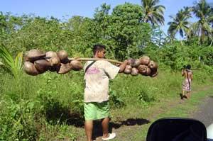 Popo (coconuts), Samoa