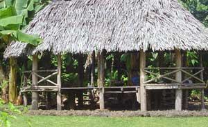 Samoan Fale