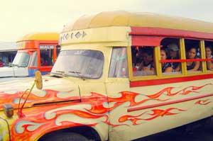 Samoan Bus