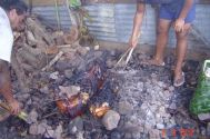 2 pigs cooked in the umu for Dad's unveiling
