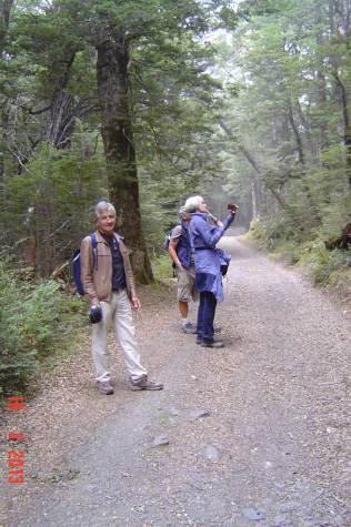 Mount-Athur---Ced,-Marg,-Tom