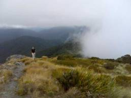 Mount-Athur---Cedric