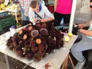 Syracusa Ortija Markets (46)