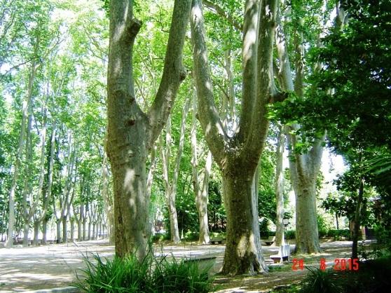 Girona Garden Reserve