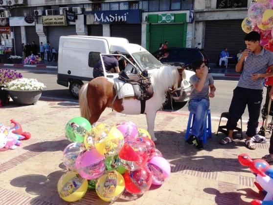 Street Sellers Tangier Maroc