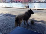 Bilbao Riverfront Walks 2015 (6)