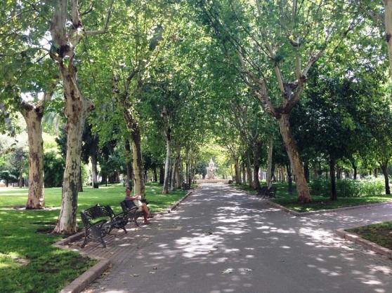 Local Garden Cordoba Spain