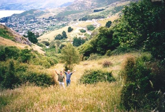 Bush Walk South Island NZ