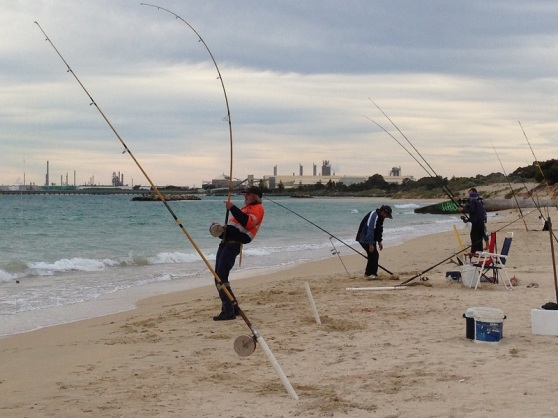 Local Recreational Fishing - Rockingham Beach WA