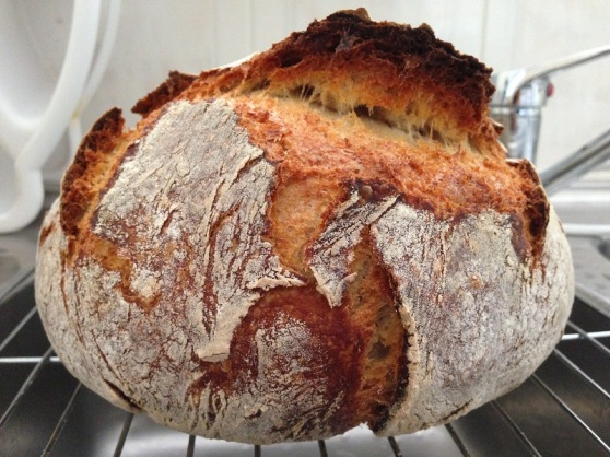 Sourdough Bread White