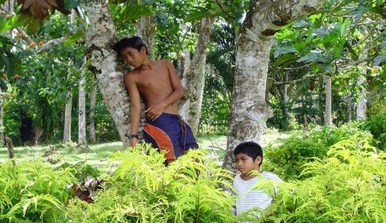 Upolo, Samoa - childhood idyll
