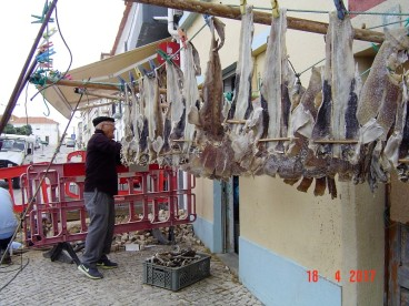 Portugal Peniche Coast - drying ray