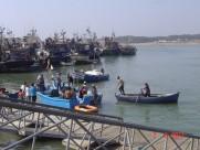 Maroc Larache - fishing habour