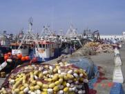Maroc M'diq fishing harbour