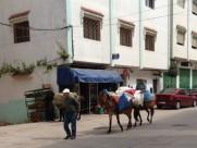 Maroc Tetouan - local village farmers