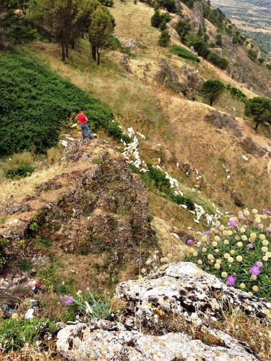 Sicily Caltabellotta - shepherd