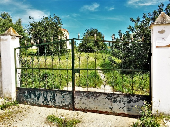Wrought Iron - neglected